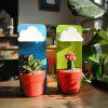 Wall Mounting Type Cloud Raindrop Watering Flower Design Plants Rainy Pot  -  Color at Random - RED
