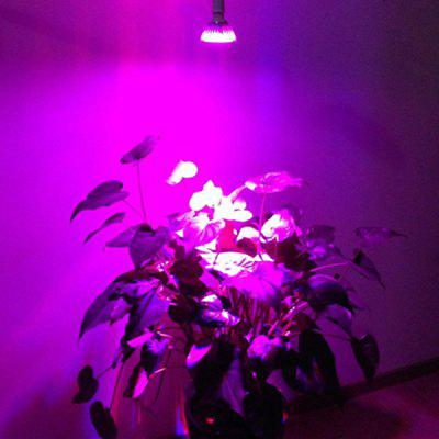 YouOKLight 15W 15 LEDs 1500LM Red + Blue Par Light LED Grow Lamp for Plants in Garden Greenhouse