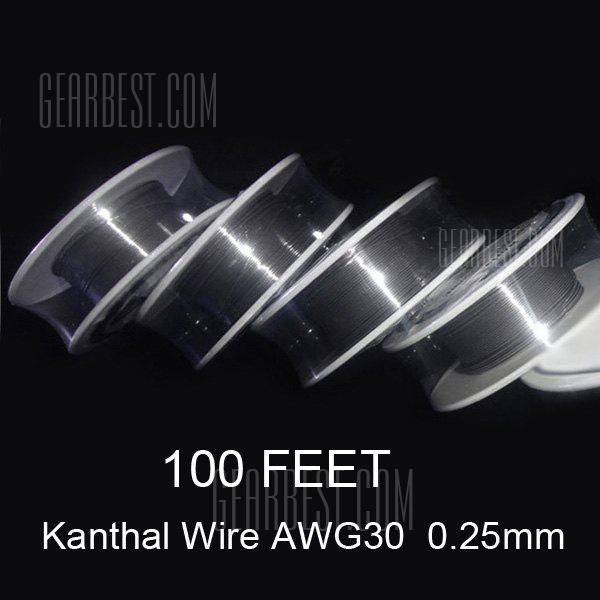 0.25mm Diameter Kanthal Resistance Wire Roll E - cigarette Coils for Atomizers DIY ( 100 Feet )