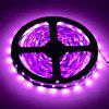 HML 5M 36W 300 x SMD 3528 Flexible LED Strip Light - PASTEL VIOLET
