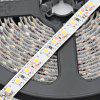 HML 5 Meters 48W 600 x SMD 3528 Flexible LED Strip Lighting - WARM WHITE LIGHT