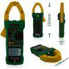 MASTECH MS2015A AC Clamp Meter 6000 Counts Auto Power Off with True RMS - GREEN
