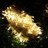 10 Meters 100 Warm White LED Water-resistant String Lights Decorative Outdoor Fairy Lamps - WARM WHITE LIGHT