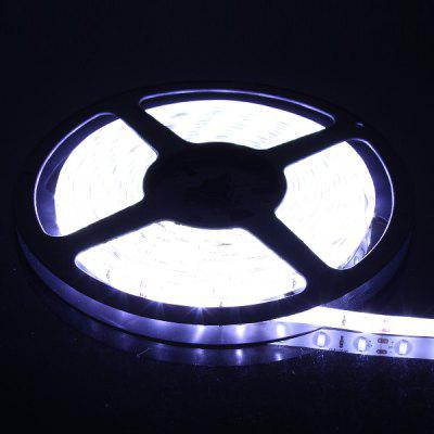60W 6000K 5 x 60 SMD 5630 LED Light Strip IP65