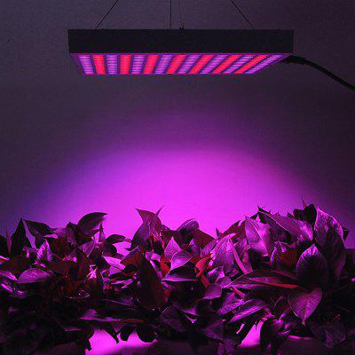 14W LED Plant Grow Light Red + Blue Light Spotlight for Garden / Greenhouse ( US Plug )