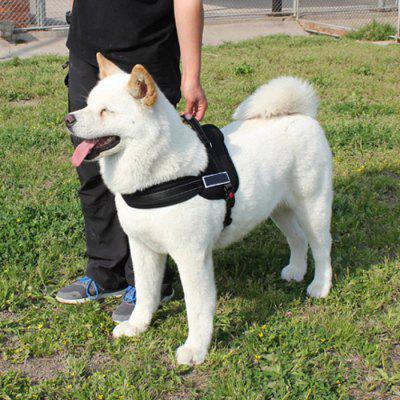 Large / Middle Size Dog Chest Strap
