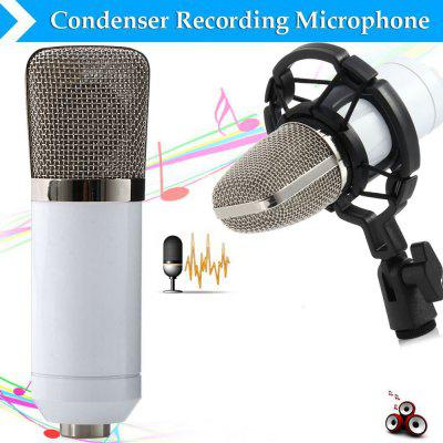 BM - 700 Condenser Sound Recording Microphone with Shock Mount