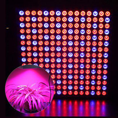 0.2W x 225 Red + LED Indoor Plant Growing Light for Indoor Plants / Seedling ( EU Plug )