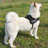 Buy Large / Middle Size Dog Chest Strap BLACK