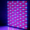 14W LED Plant Grow Light Red + Blue Light Spotlight for Garden / Greenhouse ( US Plug ) - BLUE AND RED