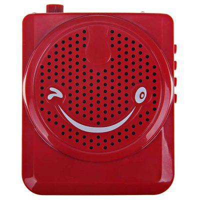 Portable Rechargeable FM Voice Amplifier Speaker with Microphone