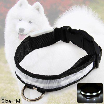 LED Light Point Pet Collar White Light