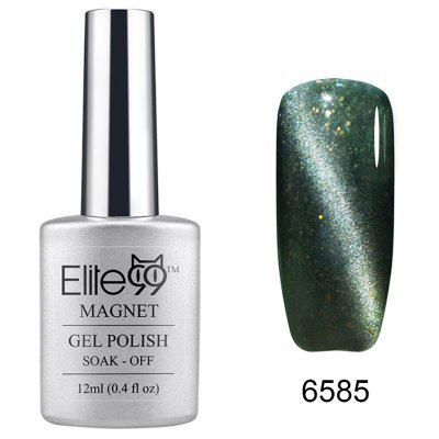12ml Cat  Eye Gel Polish