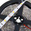Brelong 5m SMD - 5050 LED Strip Light - WARM WHITE LIGHT