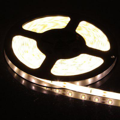 5M SMD 5630 x 60 / M 1300LM 60W Waterproof Flexible LED Rope Light