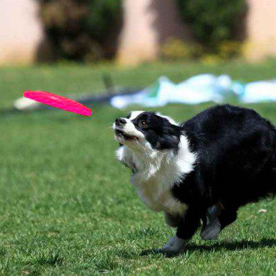 Silicone Dog Frisbee Flying Training Disc Pets Toy