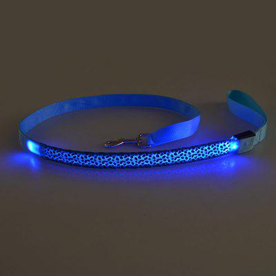 Flashing LED Puppy Traction Belt