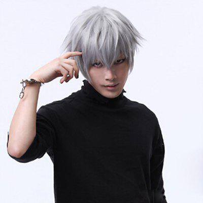 Fashion Fluffy Silver Short Natural Straight Full Bang Heat Resistant Synthetic Cosplay Anime Wig