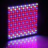 Excelvan 45W 225 SMD LED Hydroponic Plant Grow Light & Lighting Panel, Full Spectrum for Plant Flower Vegetable Greenhouse Garden, Red&Blue&White Indoor Plant Grow Light + Hanging Kit,EU. ( II Generat