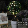 Lampwin® Led Starry String Light Copper Wire Lights Decorative Lights, 3*AA Battery Operated Lights Set, with Remote Control Dimmer. - Perfect Bedroom, Indoor or Outdoor Decorations/ Ornaments - 5M 50 - COLORE DI RAME