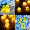 ( FLOWER STRING LIGHTS) Finether String Lights