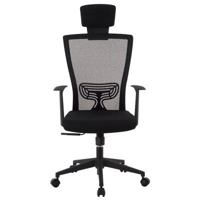 LANGRIA Ergonomic High-Back Mesh Executive Computer Office Chair with Headrest, Lumbar Support, 360 Degree Swivel, Back Tilt and 3-Position Lock, Black