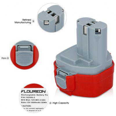 FLOUREON Batterie rechargeable Ni-MH 3000mAh 12V