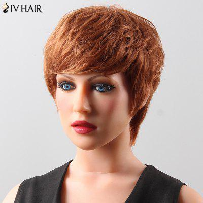 Shaggy Short Neat Bang Siv Hair Human Hair Wig For Women