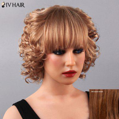 Endearing Short Curly Full Bang Siv Human Hair Wig For Women