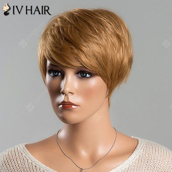 Noble Side Bang Siv Hair Capless Short Straight Layered Human Hair Wig For Women