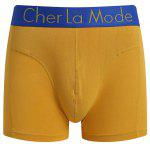 Cherlamode (Three Color) 3PCS U Pouch Hem Design Boxer Briefs For Men for sale