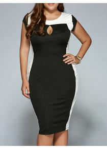 Plus Size Keyhole Neck Sheath Dress