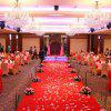 100 Pieces Wedding Party Simulation Artificial Flower Petals - RED