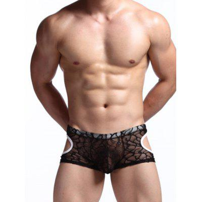 Cut Out See Through Lace Mesh Boxer Briefs