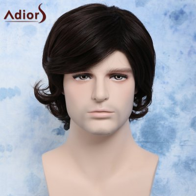 Short Side Bang Synthetic Fluffy Wavy Anti Alice Hair Men's Wig