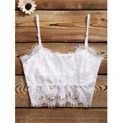 Lace Crop Top Bra