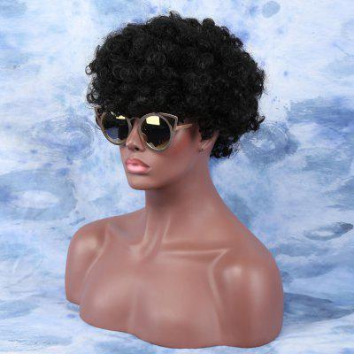 Short Fluffy Afro Curly Side Bang Wig