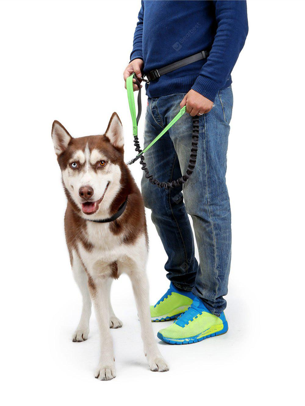 Reflective Nylon Running Belt Bungee Leash Pet Dog Traction Rope