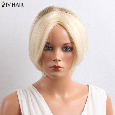 Siv Hair Colormix Short Middle Part Straight Bob Human Hair Wig