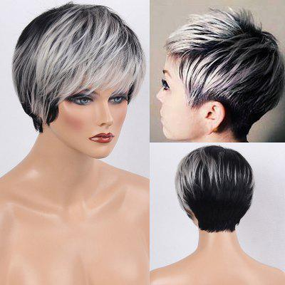 Buy WHITE AND BLACK Colormix Side Bang Layered Silky Straight Short Human Hair Wig for $49.54 in GearBest store