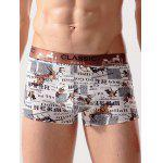 Animal Print Stretch Breathable Swimming Trunks - COLORMIX