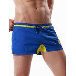 Buy Drawstring Graphic Embroidered Panel Sport Shorts XL BLUE