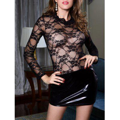 Lace Insert Sheer Dress with Sleeves