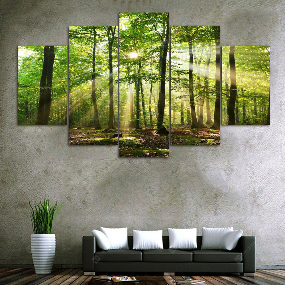 Sunlight Forest Print Unframed Canvas Split Paintings