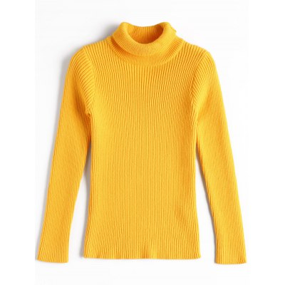 Tight Slim Turtle Neck Sweater