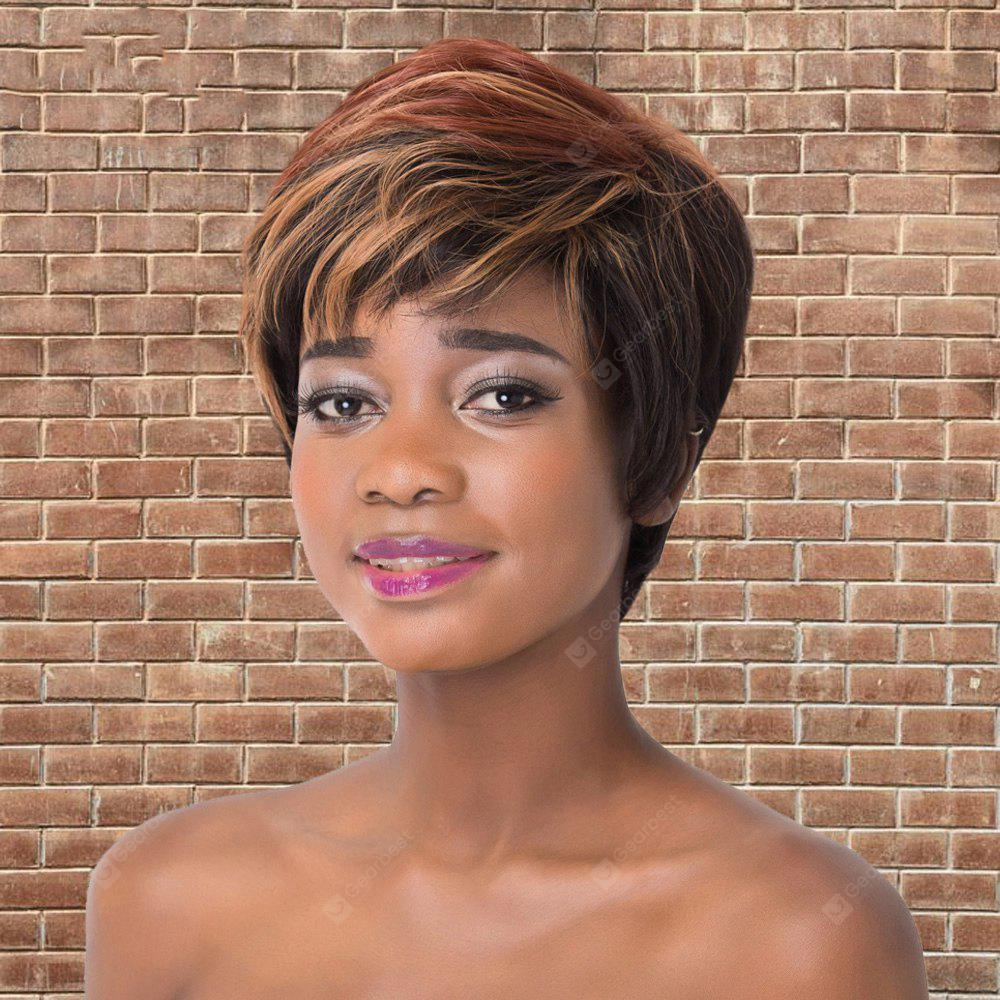 COLORMIX Adiors Short Full Bang Fluffy Mixed Color Straight Synthetic Wig