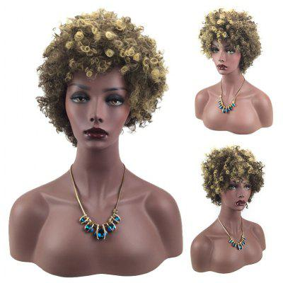 Short Side Bang Colormix Shaggy Afro Curly Synthetic Wig