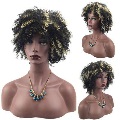 Short Side Bang Highlighted Fluffy Afro Curly Synthetic Wig