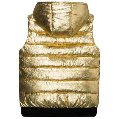 Metallic Color Zip Up Hooded Quilted VestWaistcoats<br>Metallic Color Zip Up Hooded Quilted Vest<br><br>Closure Type: Zipper<br>Collar: Hooded<br>Material: Polyester<br>Package Contents: 1 x Vest<br>Shirt Length: Regular<br>Style: Casual<br>Thickness: Thick<br>Weight: 0.6300kg