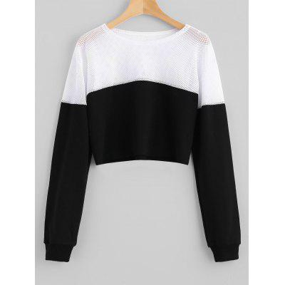 Mesh Panel Contrasting Cropped Sweatshirt